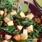 applecranberrykalesalad