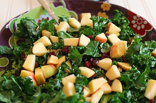 applecranberrykalesalad2